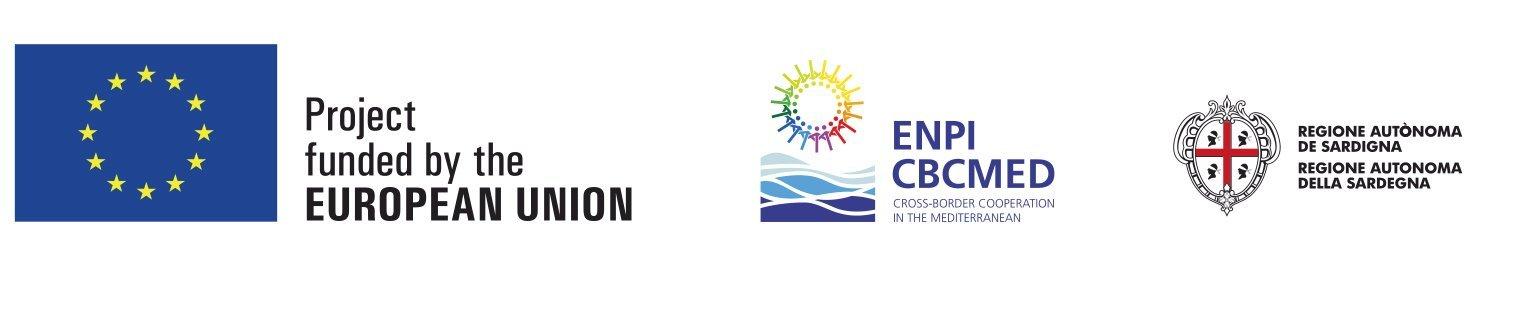 ENPI logo