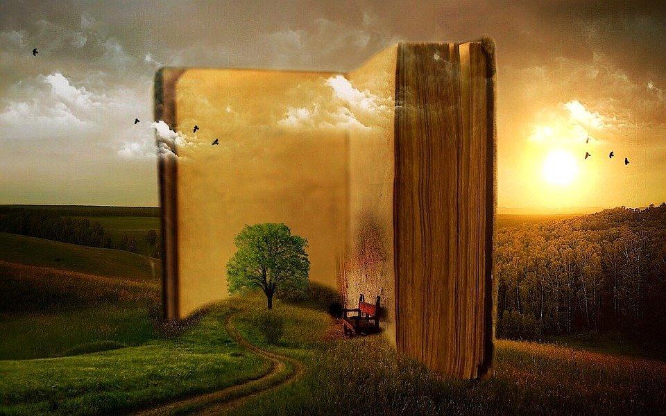 READ: job shadowing in India e Kenya sulla promozione della lettura