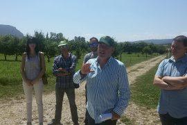 SuperGREENLABELFoods: Nuove competenze per professionisti del settore agro-alimentare
